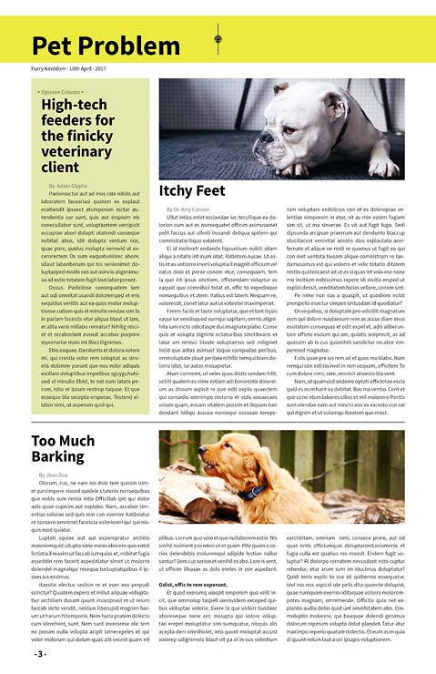 Furry Kingdom, Newspaper Template – furry-kingdom-newspaper2