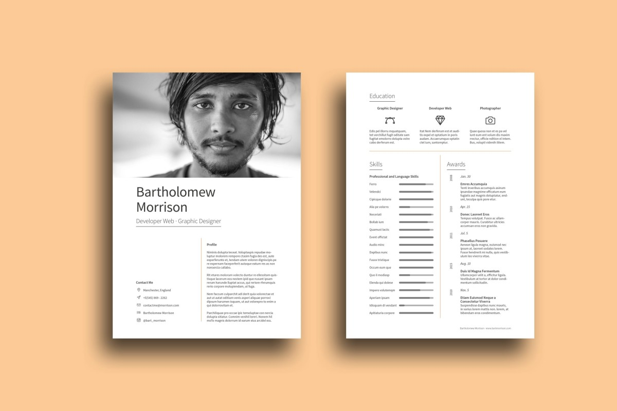 free resume cv indesign template  designer edition  u2022 pagephilia