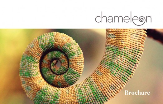 Plantilla de Brochure Chameleon By Ktyellow on Pagephilia