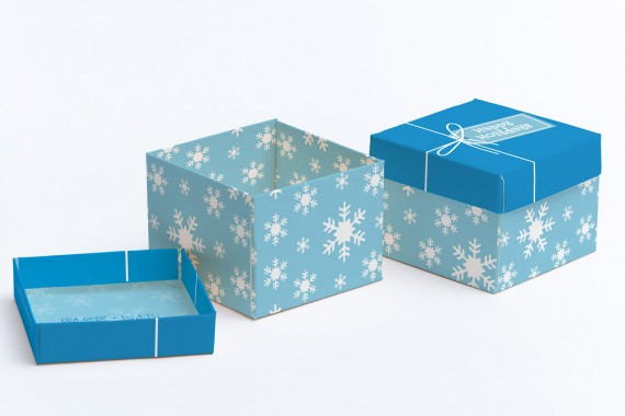 Christmas Packaging Vector Designs (Pack-Man Edition) – cube-gift-box-mockup-02
