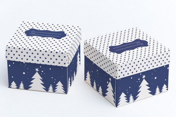 Christmas Packaging Vector Designs (Pack-Man Edition) – cube-gift-box-mockup-03